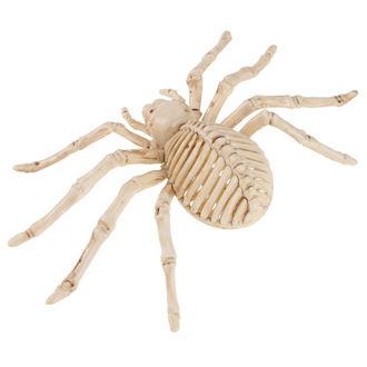 Décoration Squelette d'araignée