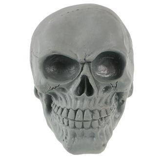 Crâne ZOELIBAT, ZOELIBAT