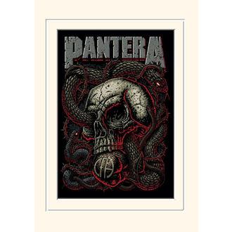 Affiche Pantera - (&&string0&&) - PYRAMID POSTERS, PYRAMID POSTERS, Pantera