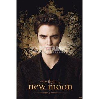 affiche Twilight - New Moon (Edward Trees) - PYRAMID POSTERS, TWILIGHT