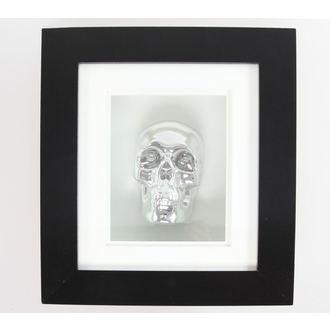 tableau Silver Skull In Cadre