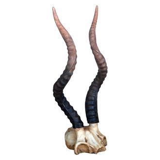 décoration Kudu Horns - D1194D5