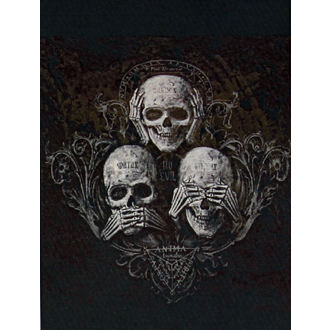 couverture ALCHEMY GOTHIC - No Evil King, ALCHEMY GOTHIC