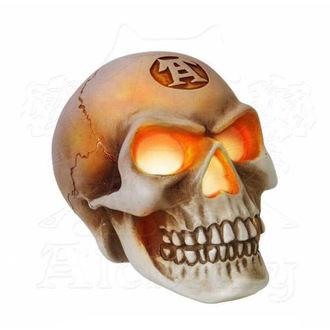 Décoration ALCHEMY GOTHIC - LED Skull, ALCHEMY GOTHIC