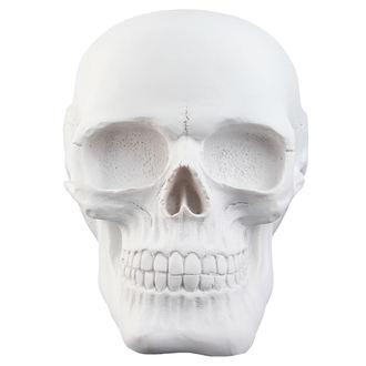 crâne Crâne - White