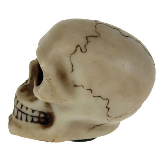 décoration (levier de vitesse) 'Skull Gear', NNM