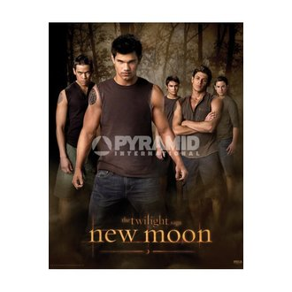 affiche Twilight - New Moon (Wolf Pack) - MPP50303, TWILIGHT