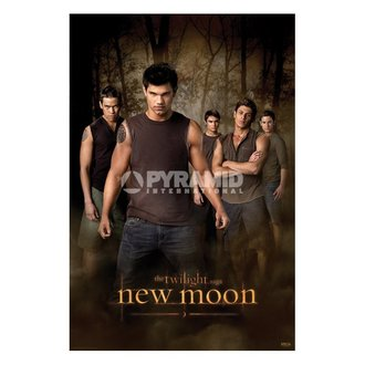 affiche Twilight - New Moon (Wolf Pack) (Tentation) - PP32065, TWILIGHT