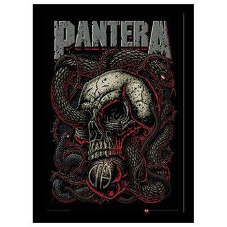 Affiche encadrée Pantera - Snake Eye - PYRAMID POSTERS, PYRAMID POSTERS, Pantera