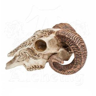 Décoration ALCHEMY GOTHIC - Skrimshaw Ram Skull, ALCHEMY GOTHIC